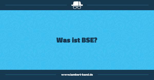 Was ist BSE?